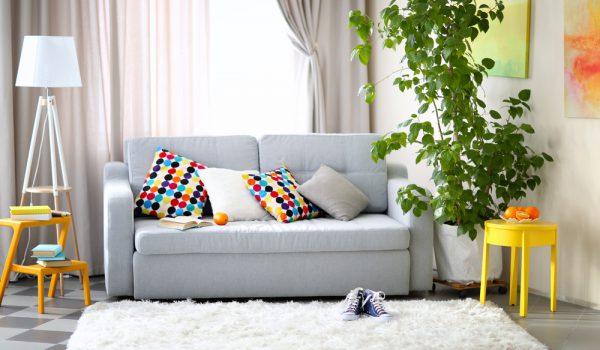 Má higienização de sofás pode trazer riscos a saúde